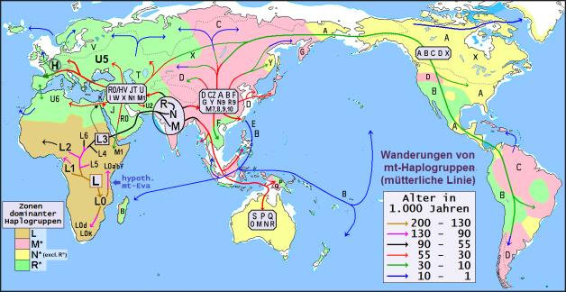 Haplogruppen zeigen die frühe Migration der Menschen: Tausende Jahre vor der Gegenwart.