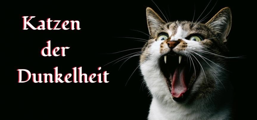 Katzen der Dunkelheit: NeueSpiellinien!